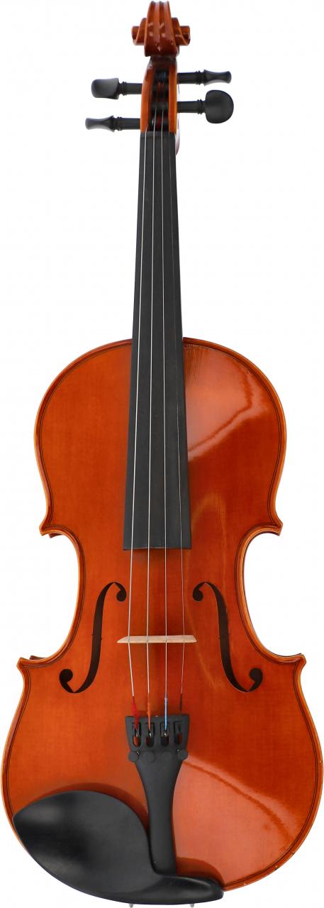Violine Schülerinstrument 4/4 - Mietbestand